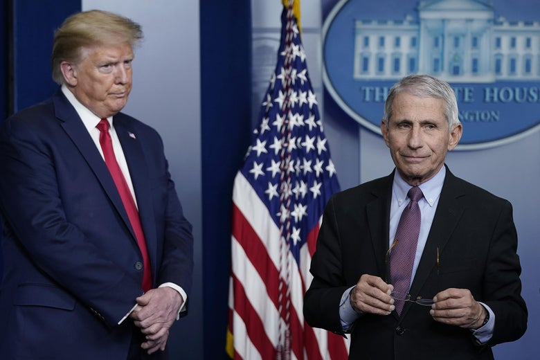 Trump, with furrowed brow, on the left, and Fauci holding his glasses, looking off to the side, on the right.