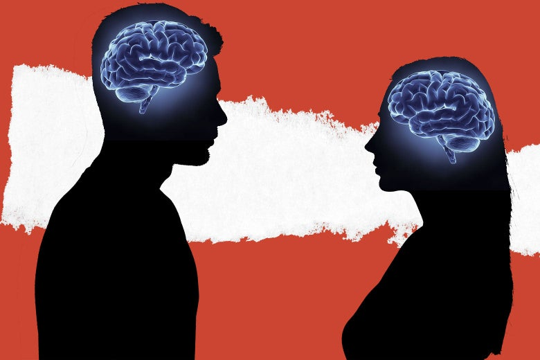 The Long, Unscientific History of His 'n' Hers Brains