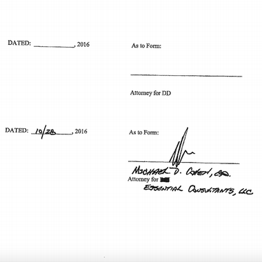 "The signature line that reads ""attorney for DD,"" aka Donald Trump, is blank."