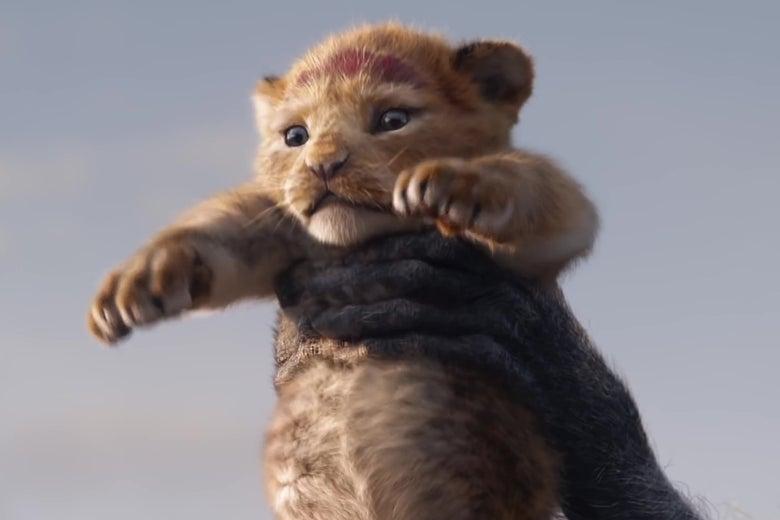 A photorealistic animated lion cub.