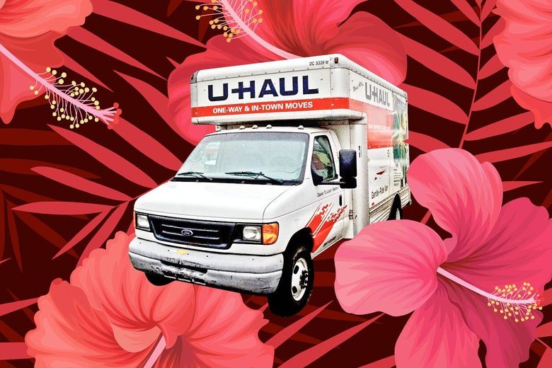 Photo of a U-Haul box truck on a floral background