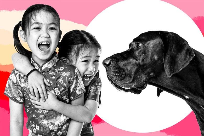 Photo illustration of children shrieking at a dog
