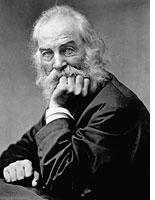 Whitman and Cunningham: a bad match. Click image to expand.