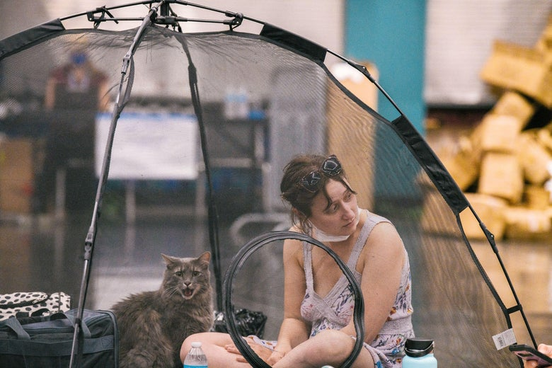Woman with a cat inside a tent