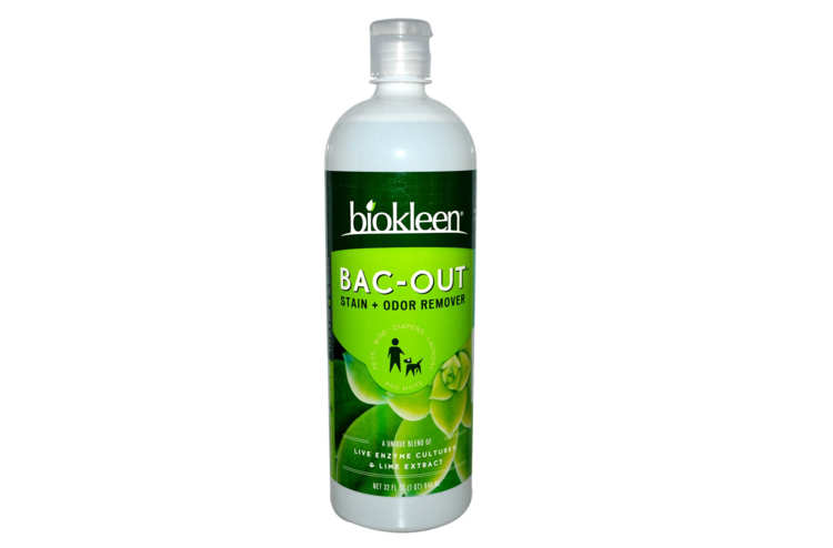 Biokleen Bac-Out Stain Remover