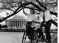 The Nixon family on bicycles under the cherry trees         Click image to expand.