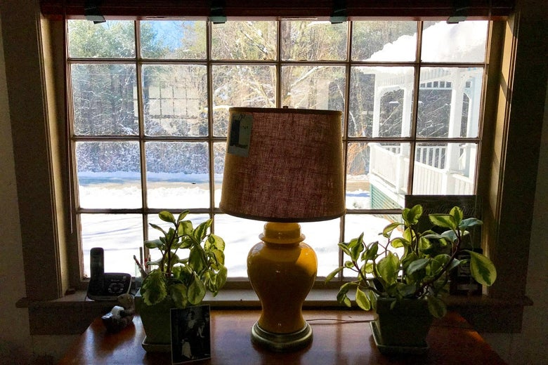 Window facing lawn with lamp in foreground.