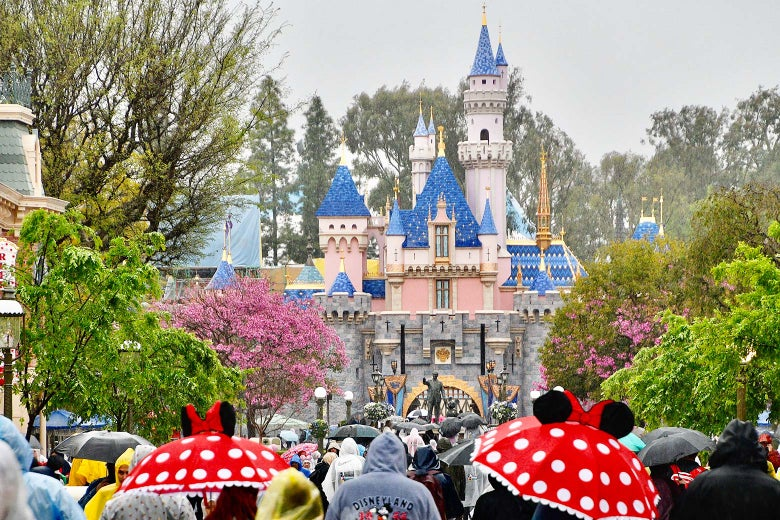 A crowd at Disneyland in California.