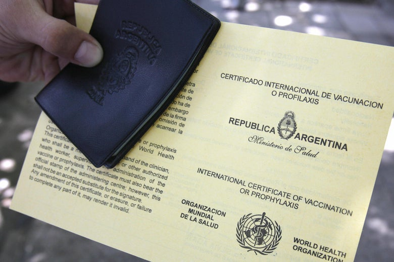 A person's hand holds the yellow World Health Organization yellow fever immunization certificate.