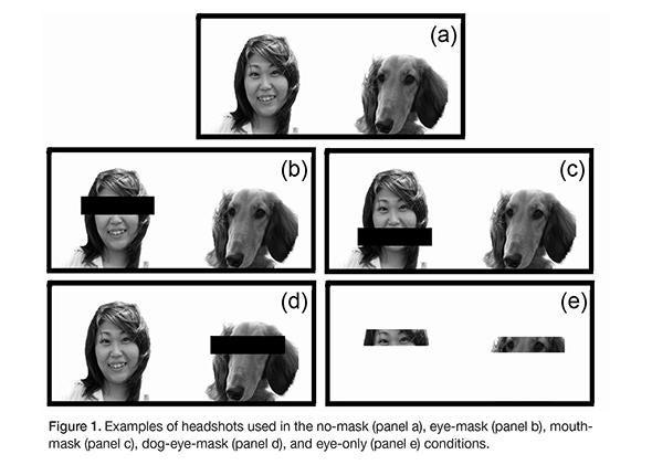 Human dog look alike study.