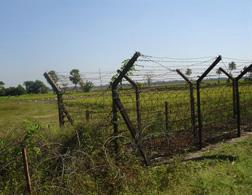 Barbed-wire fence. Click image to expand.