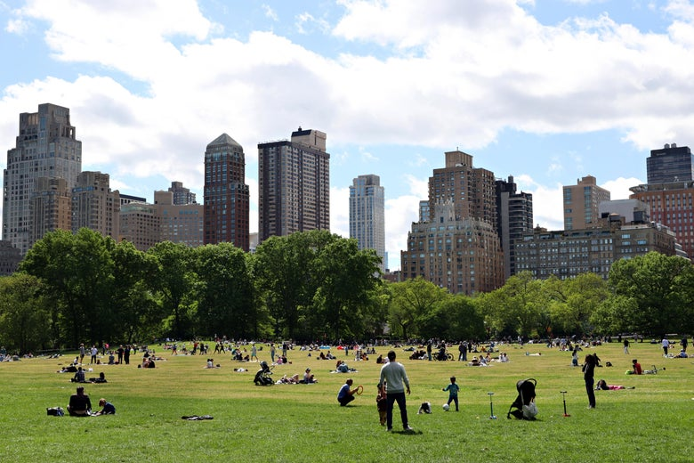 People in a meadow in Central Park, seen in front of trees and the Manhattan skyline