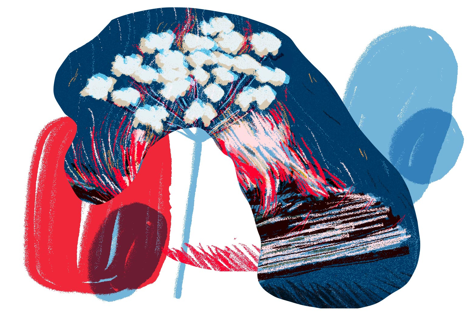 Cow parsnip and burning paper hovering over circular red and blue forms.