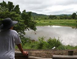 Kruger National Park. Click image to expand.
