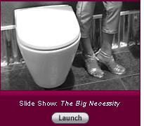 Click here to launch a slide show on The Big Necessity.