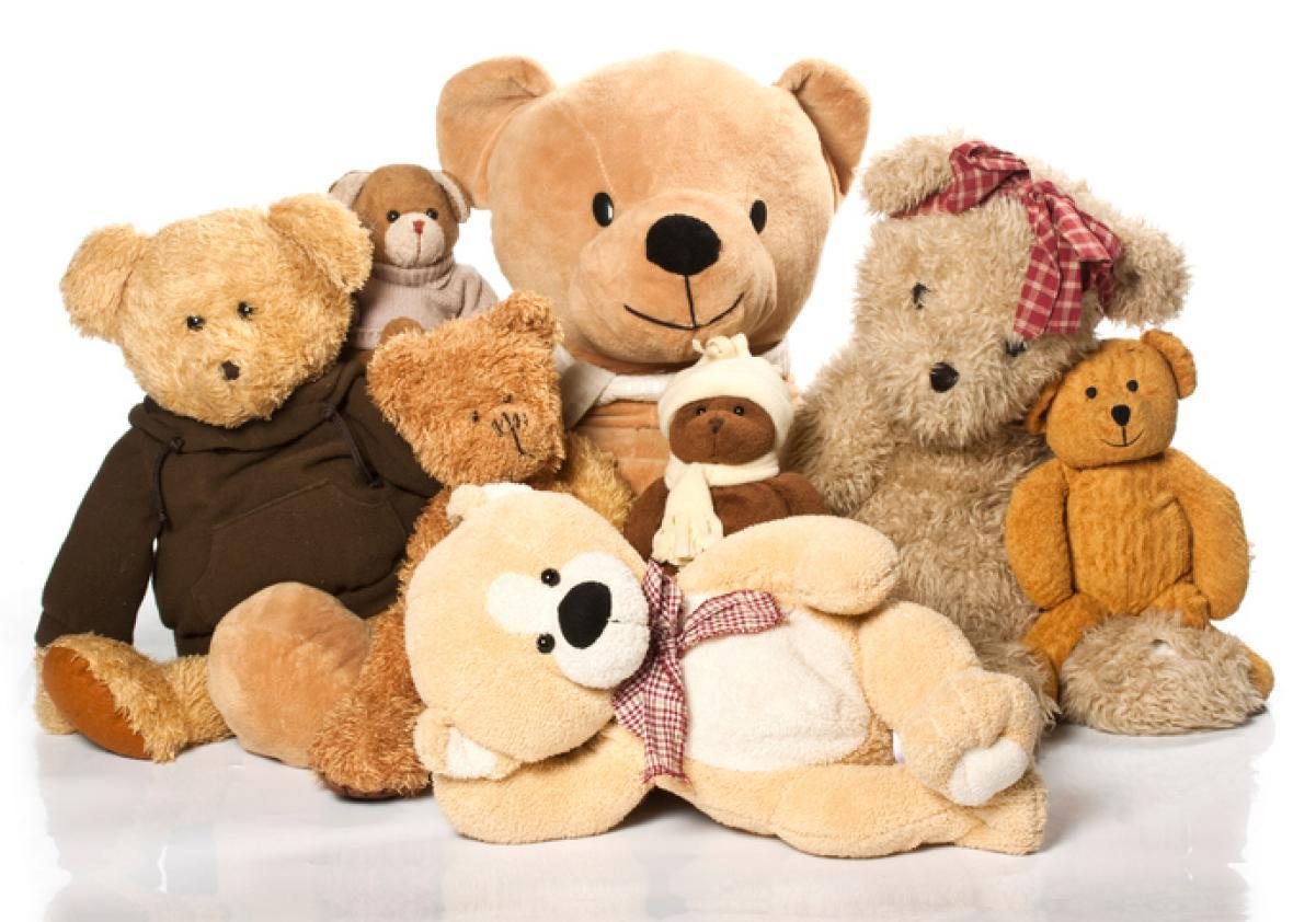 d9eb9a06c2a4 Our Children Aren't Getting Softer, but Their Stuffed Animals Are. Here's  Why.