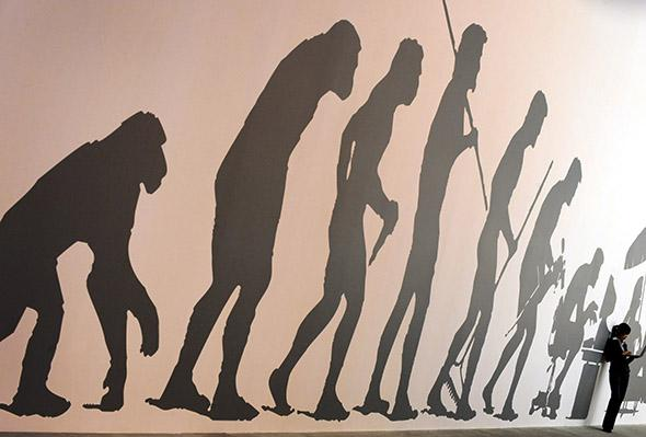 An archival photo of a satire of the famous March of Progress illustration of human evolution.