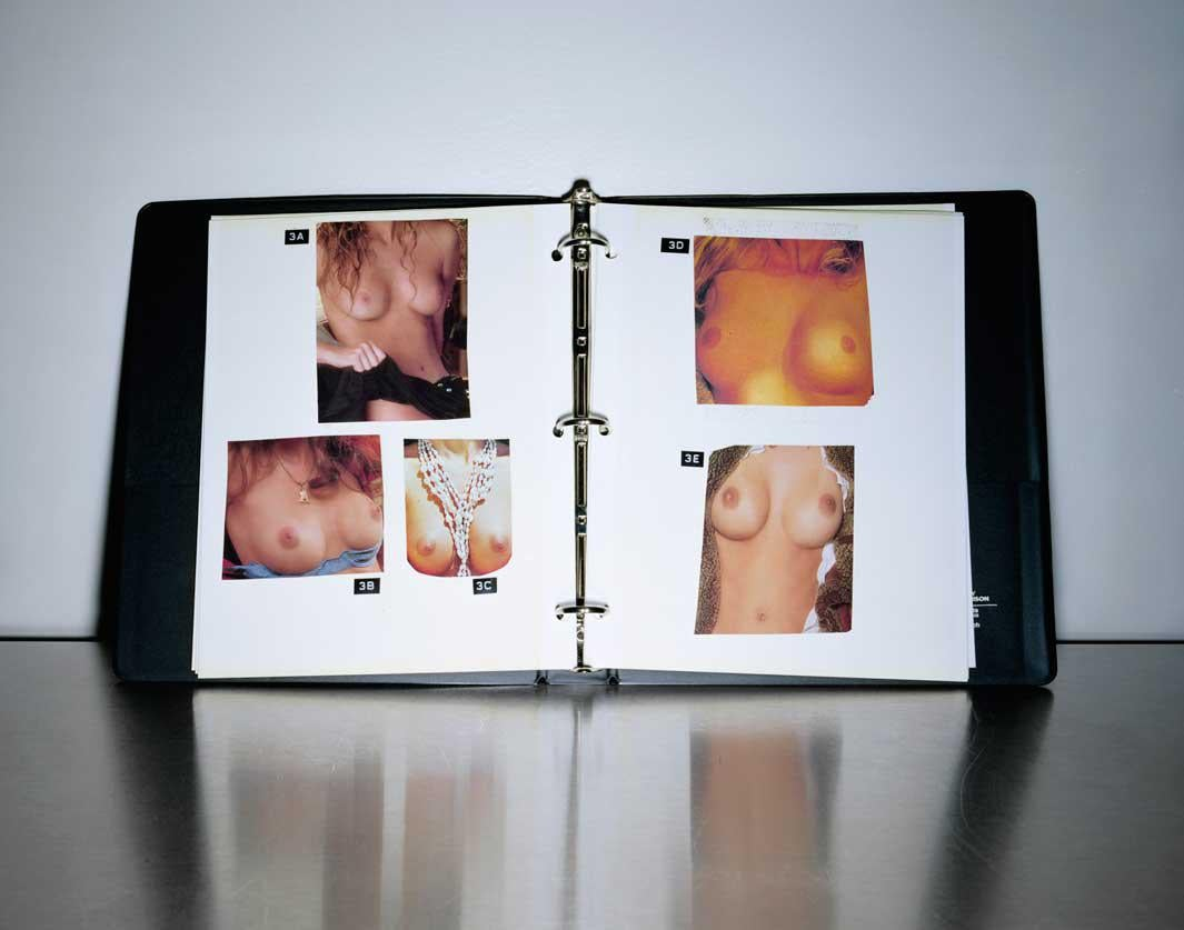 The Breast Book, 2006