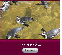 Click here to launch the slideshow Poo at the Zoo.