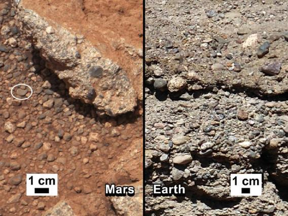 Mars rocks and Earth rocks