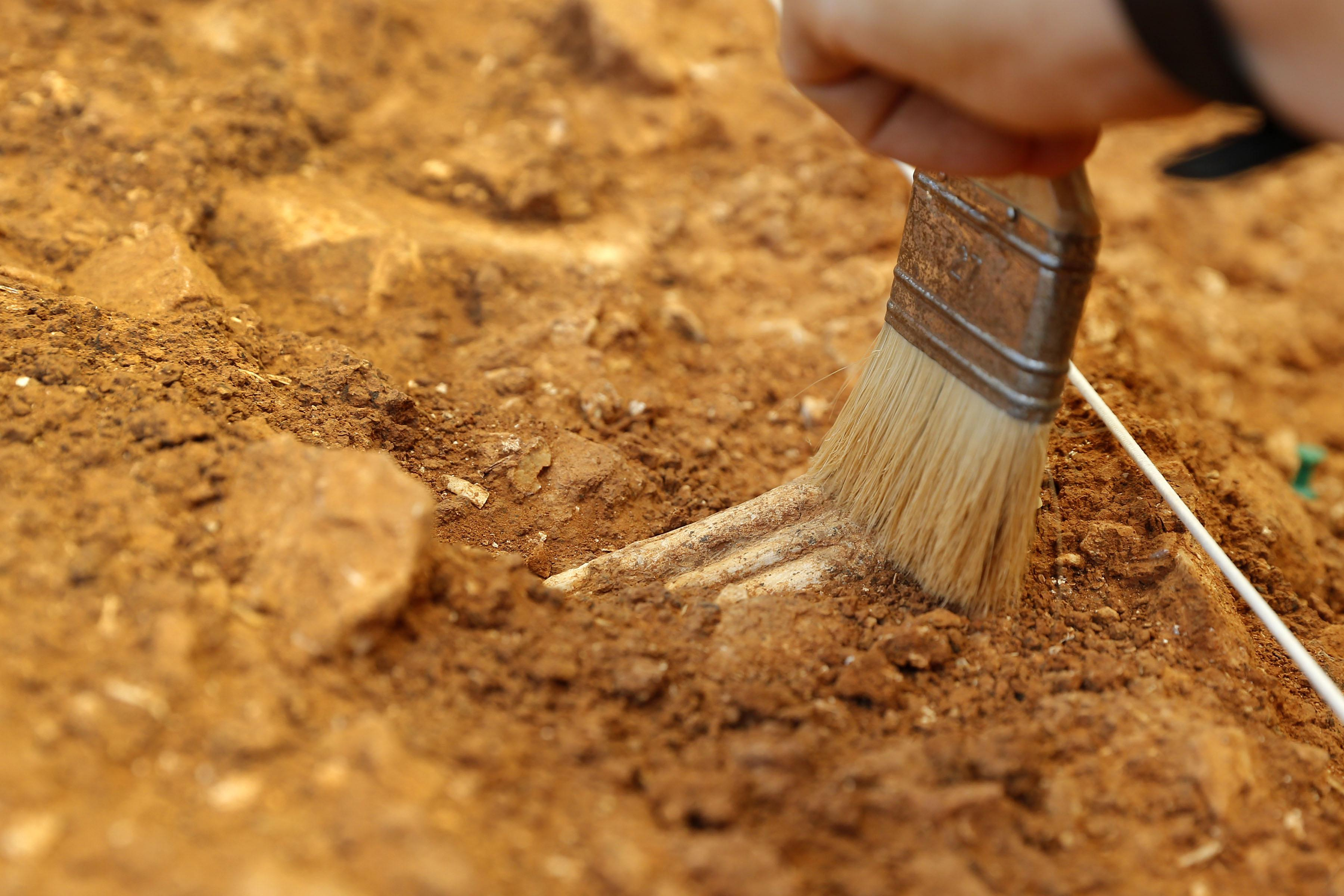 400,000-year-old DNA is oldest human genetic material ever uncovered.