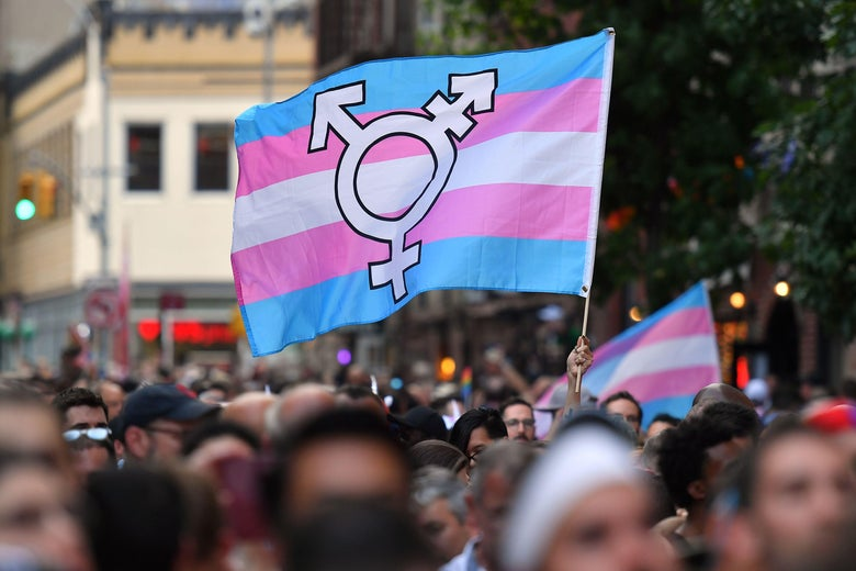 A person holds up a transgender pride flag in the middle of a crowd.