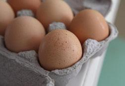 Fresh brown eggs. Click image to expand.