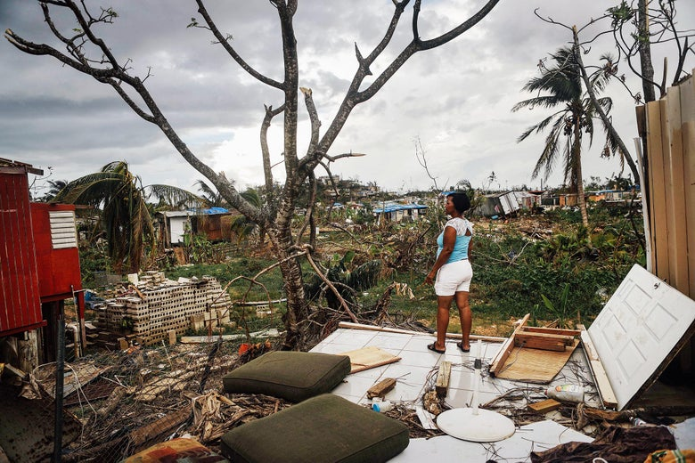 A woman standing on the floor of a demolished house surveying a landscape strewn with debris from other homes toppled by a hurricane.