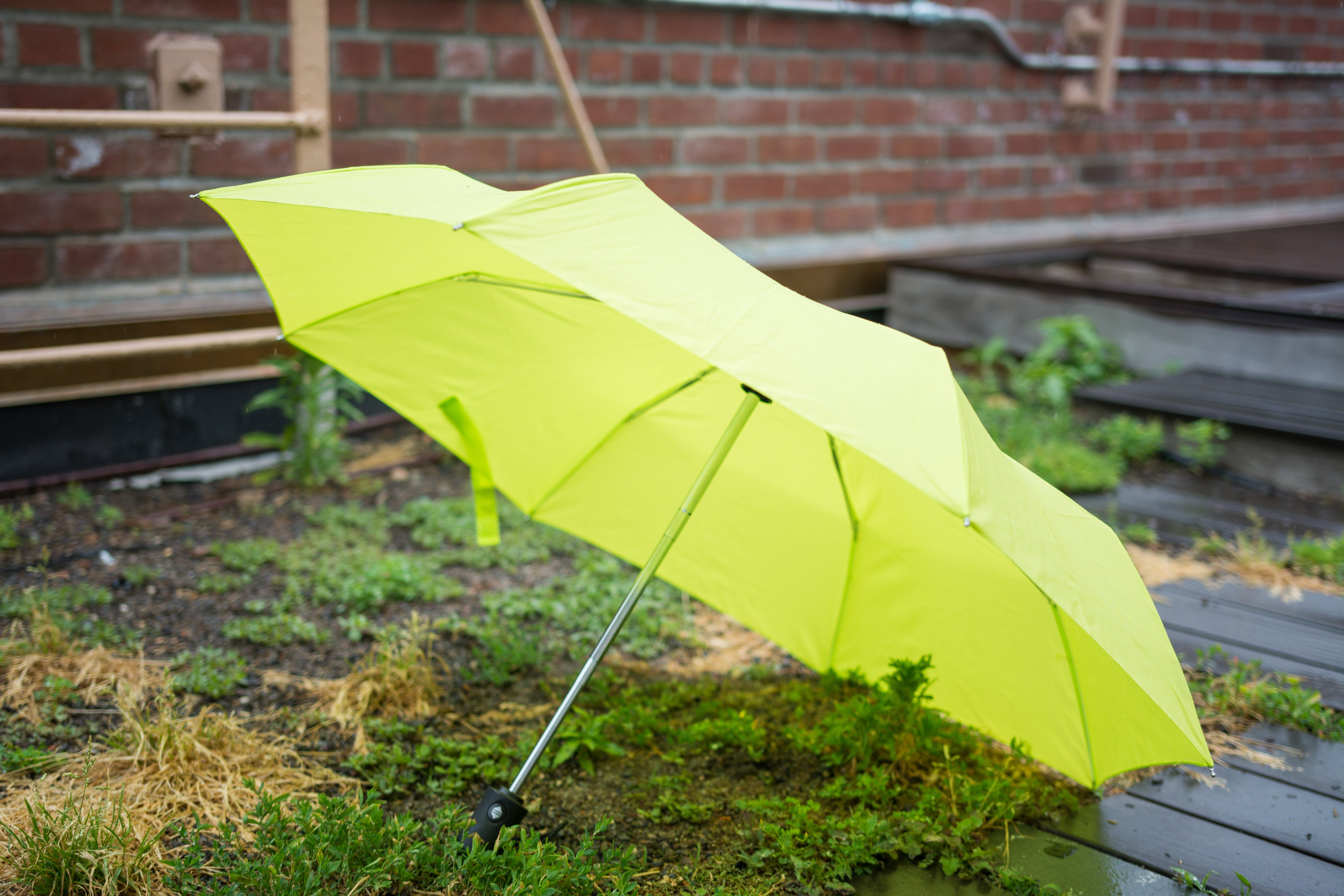 opened green umbrella on the grass