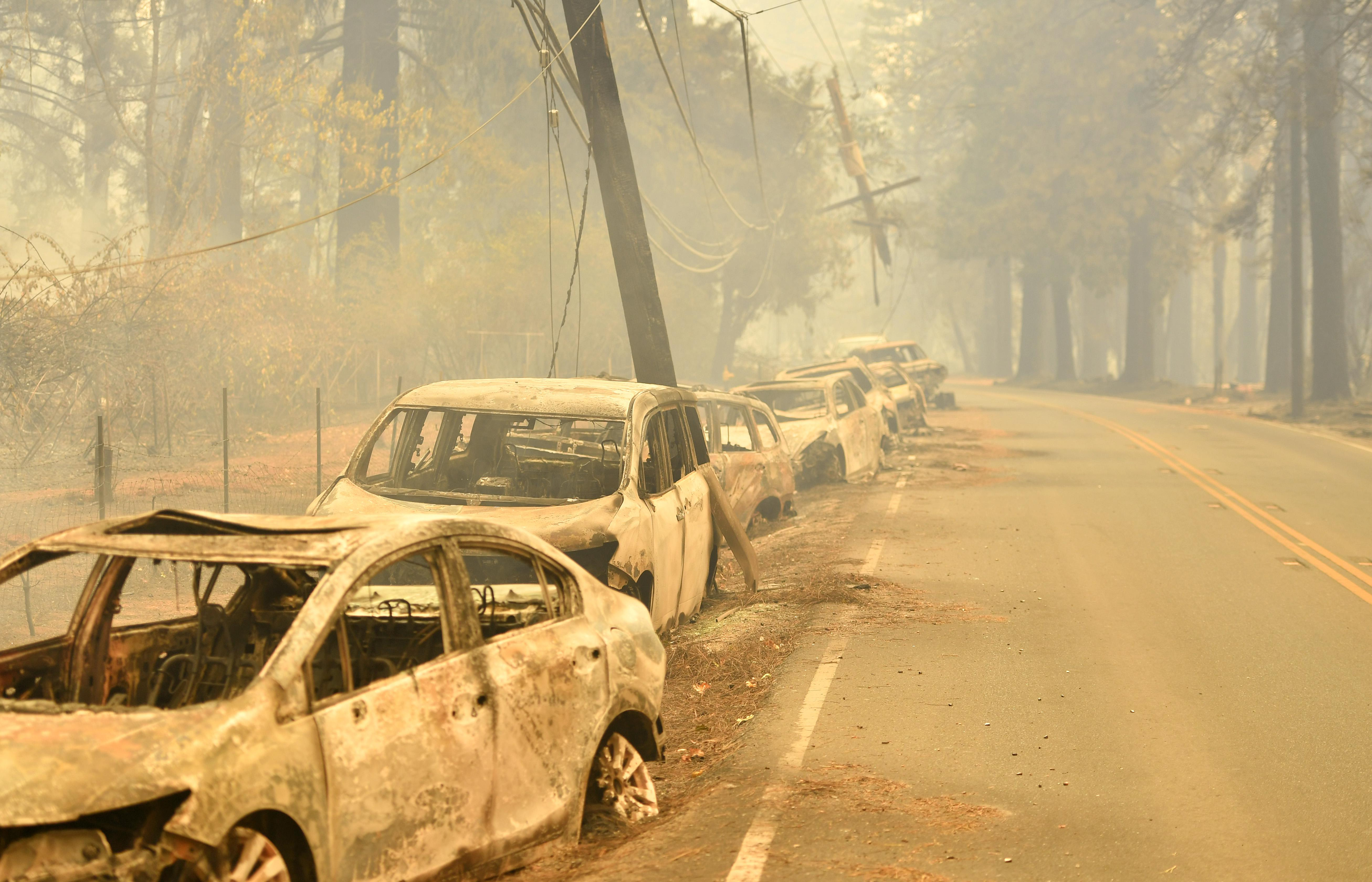 Burned vehicles on the side of a road ravaged by wildfire.