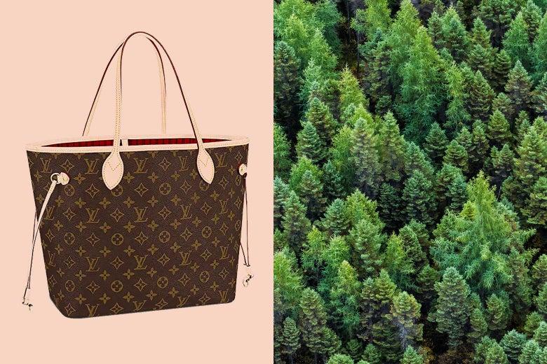 A Louis Vuitton bag is seen alongside a forest.