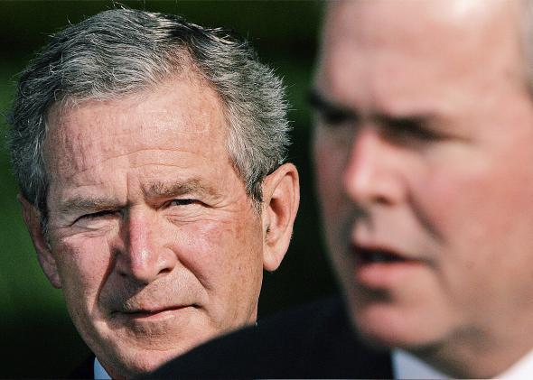 Bush Bush