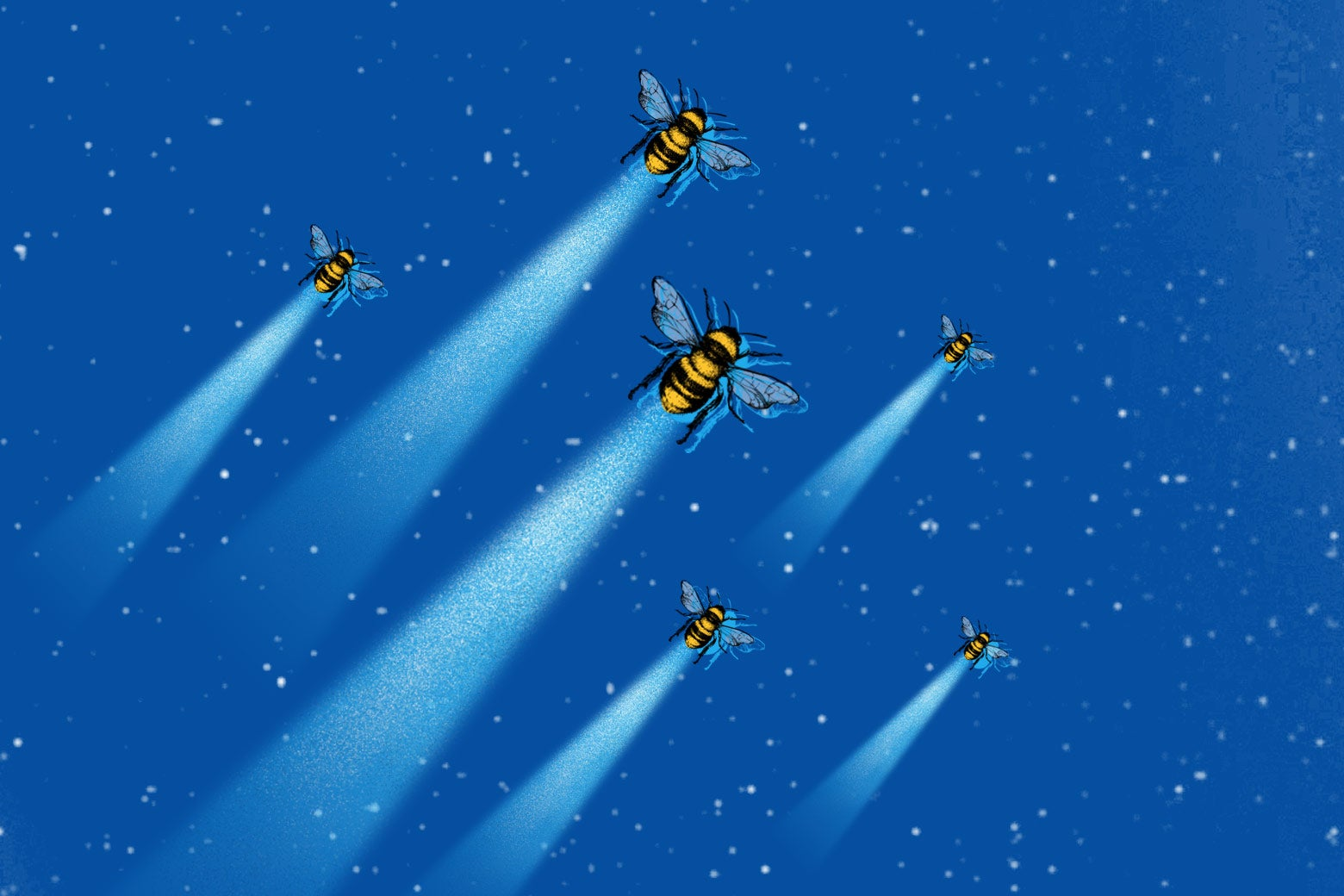 Space bees.