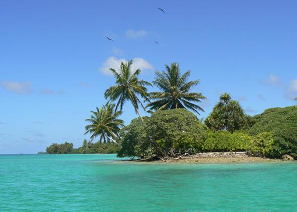 Palmyra Atoll.