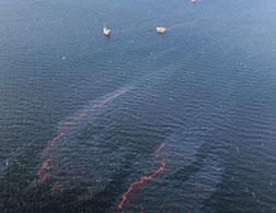 Oil spill. Click image to expand.