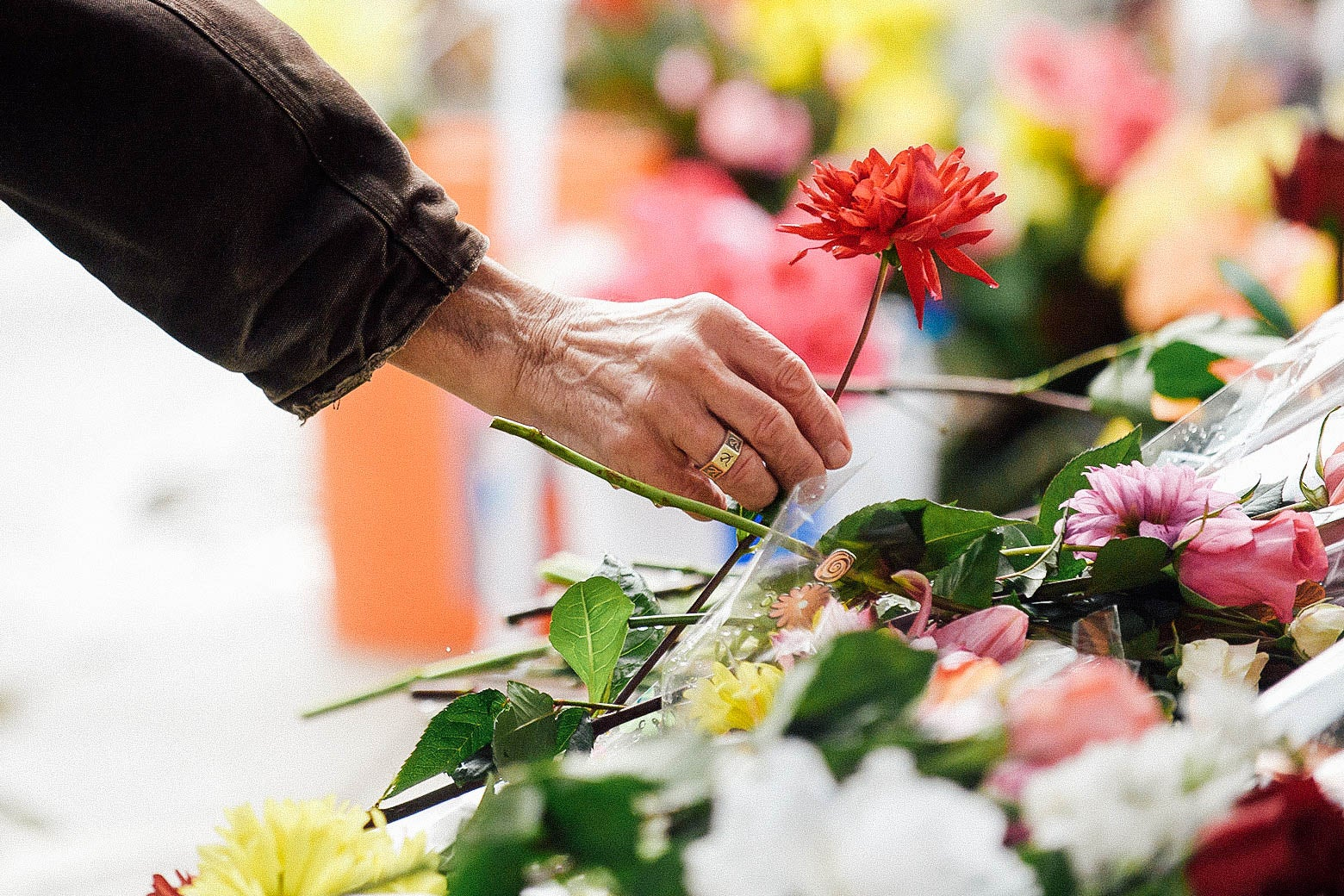 A hand reaching down to lay a flower on the memorial.