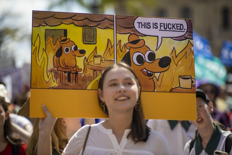 "A girl holds a sign featuring the ""This is fine""comic panel, featuring a dog sitting in a burning room. The caption has replaced ""this is fine"" with ""this is fucked."""