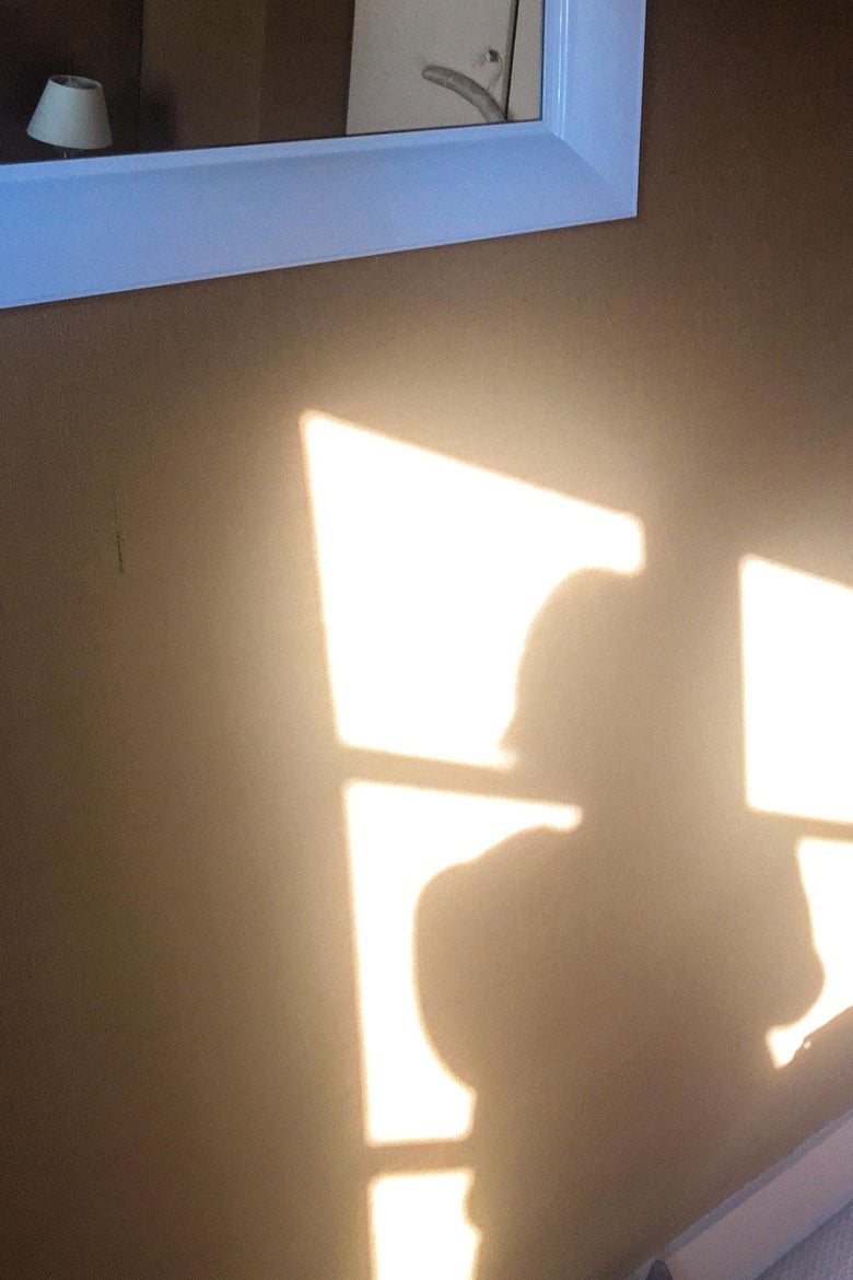 A silhouette of a person created by a sunlit window.