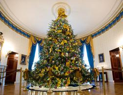 White House Christmas Tree. Click image to expand.