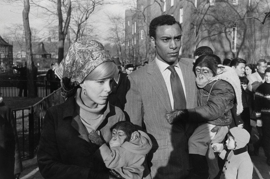 Central Park Zoo, 1967
