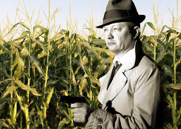 corn spy.