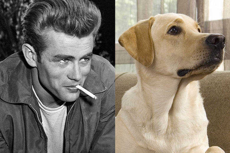 James Dean and a very good boy.
