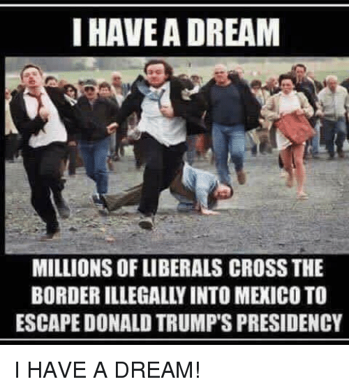 """I Have A Dream"" meme"