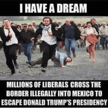 """I Have A Dream"" meme"
