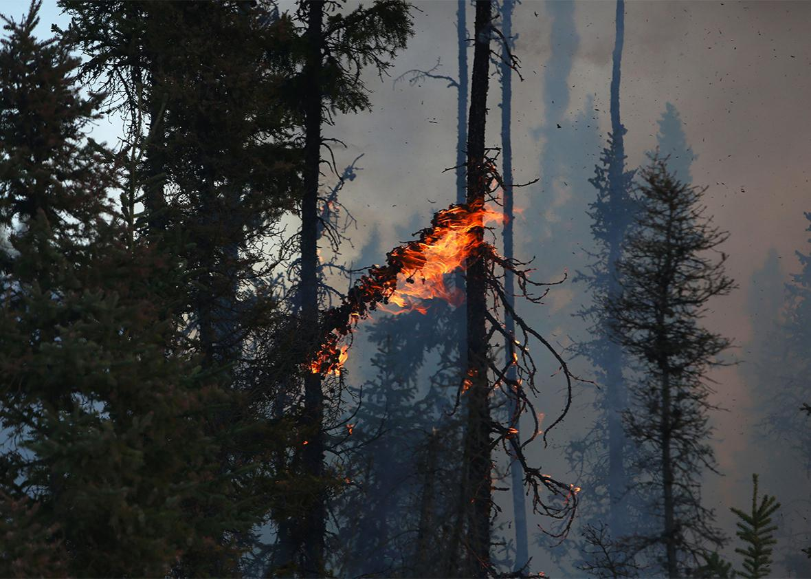 Smoke and flames can be seen along the highway near Fort McMurray, Alberta, Canada on May 6, 2016.