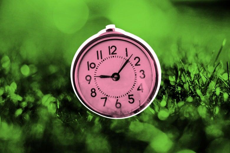 A clock sitting in a field, in the sunlight.