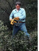 President Reagan clearing brush. Click image to expand.