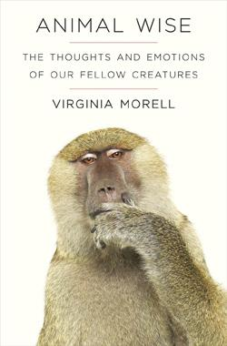 Animal Wise by Virginia Morell.