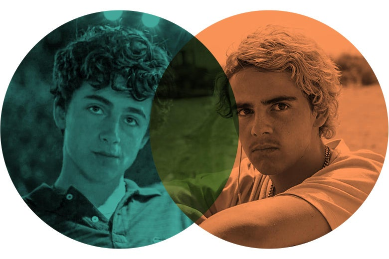 A Venn diagram where one circle contains a picture of Chalamet as Elio and one of Grazer as Fraser, with some overlap in the middle.