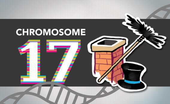 Blogging the Human Genome Entry 11